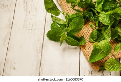 Peppermint is a popular herb used in health products.