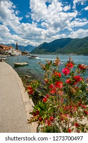 PERAST, MONTENGRO - MAY 16, 2017: Wooden boats bring tourist back from the two churches Our Lady of the Rock and St.George Island in Perast. Boka Kotor bay sunny spring day with red blossom bush