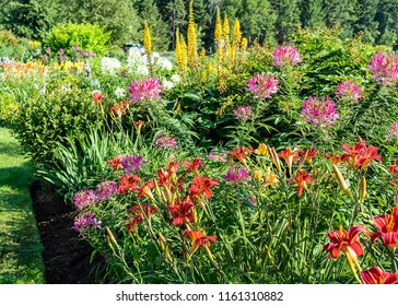Perennial flower bed with red daylilies in the foreground.