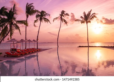 Perfect beach sunset, relaxation pool in a luxurious beachfront hotel resort in sunset light perfect beach holiday vacation banner. Sunset beach landscape. Loungers palm tree infinity pool reflections