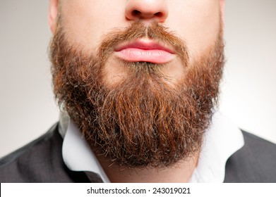 Perfect beard. Close-up of young bearded man standing against white background