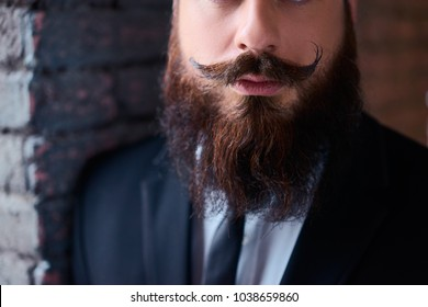 Perfect beard and moustache. Close-up of young bearded man.