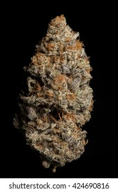 Perfect Cannabis Bud - Candyland Strain, Grown by TKO Reserve