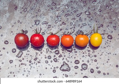 Perfect color gradation line of diverse kinds of tomatoes on wet surface
