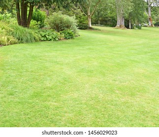 A perfect English country garden with manicured lawn and a boarder surrounded by shrubs, small trees and some colourful flowers.