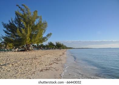 perfect golden rock beach, grand bahama island, bahamas (beach of Pirates of the caribbean)