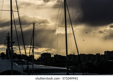 Perfect golden sunset with flying birds over the sailing boats in a marina