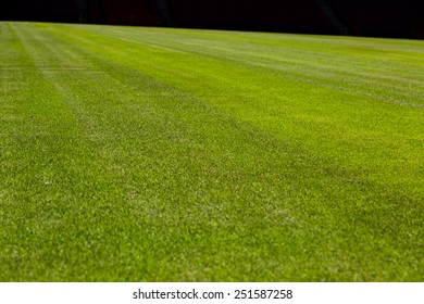 Perfect green soccer pitch ready for the upcoming soccer season.