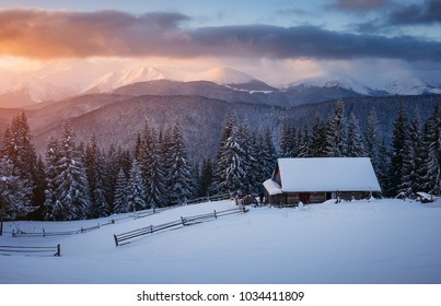 Perfect morning moment in alpine valley. Frosty day in sun light. Location Carpathian, Ukraine, Europe. Scenic image of wilderness, holiday concept. Adventure vacations. Explore the beauty of earth.