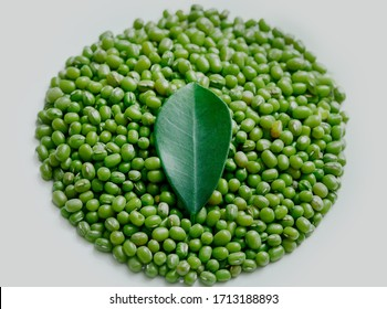 Perfect mung bean circle. The green leaf lies right in the middle. Macro shot of beans on an isolated background