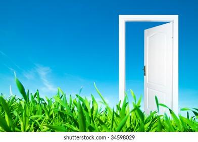 Perfect new world. Door open to new life