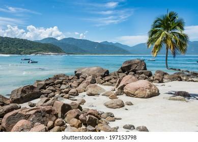 Perfect One Palm Tree Beach, Ilha Grande Island. Tropical Paradise Rio do Janeiro. Brazil. South America Adventure.