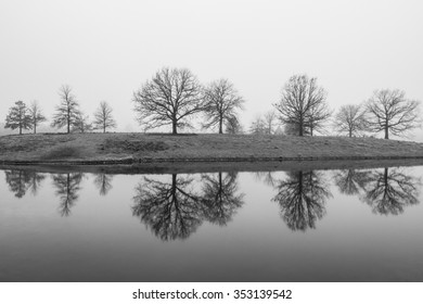 Perfect reflection of trees in a lake / pond on a foggy afternoon.