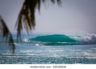 A perfect right hand wave breaking over the reef in the Mentawai Islands, Indonesia