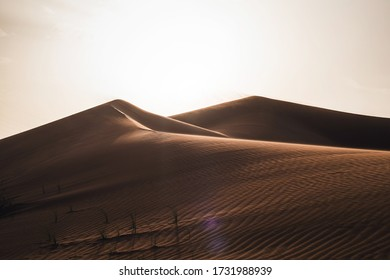 Perfect sanddunes in the Arabian desert