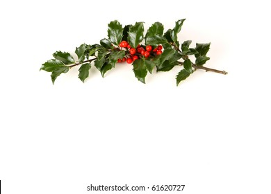 Perfect sprig of holly with bright red berries on white with room for your holiday text.