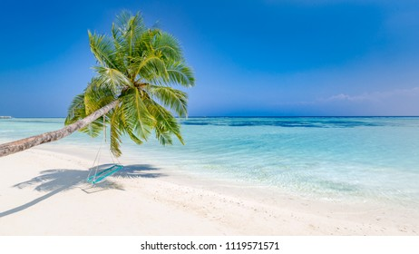 Perfect summer holiday background or banner. Palm and beach