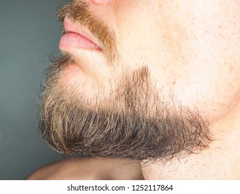 Perfect trimmed facial hair on male, beard at close up
