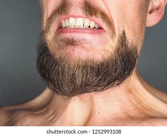 Perfect trimmed facial hair on angry Caucasian male person, showing teeth at close-up against gray background