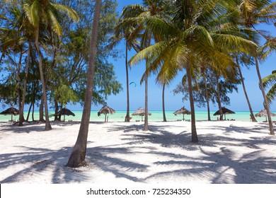 Perfect white sandy beach with palm trees, Paje, Zanzibar, Tanzania