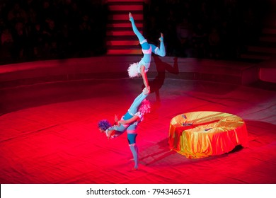 performance of acrobats in the circus