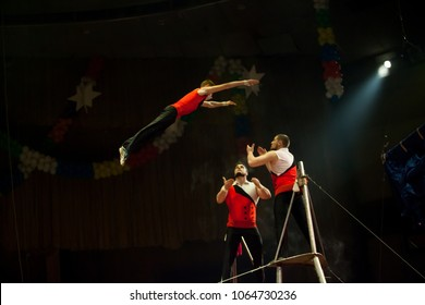 performance of aerialists in the circus