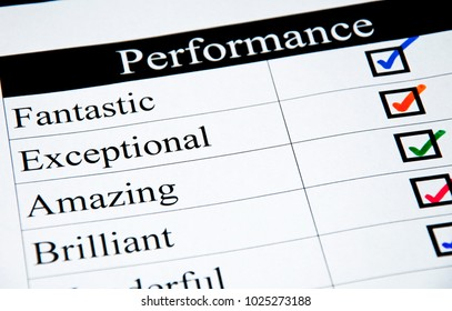 Performance Assessment Form