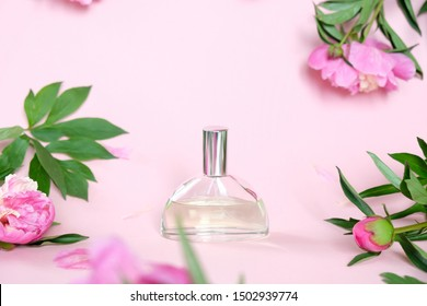 Perfume bottle on pink background with beautiful peonies. The concept of flavor.