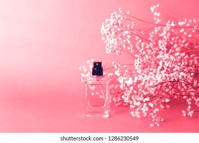 Perfume jar with gypsophila around coral color.