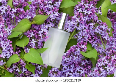 Perfumed water, eau de par fum with floral aroma. lilac and perfume in white transparent bottle in  spring flower background. Beauty cosmetic concept, fragrant aromatic fresh. flavoring. scent sprayer - Shutterstock ID 1980217139