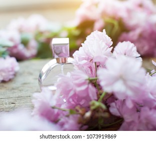 Perfumes. Perfume bottle. Top view. Spring tree with pink flowers. Pink flowering tree over nature background / Spring tree / Spring Background.