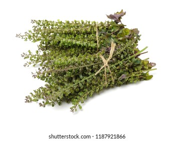 Perilla herb seed used in traditional,chinese herbal medicine isolated over white background. Su zi. Fructus perillae frutescentis.