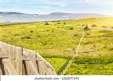 Perimeter fence on the hill in countryside near the road. Bright rural landscape with field of yellow flowers and mountain on background in warm summer day