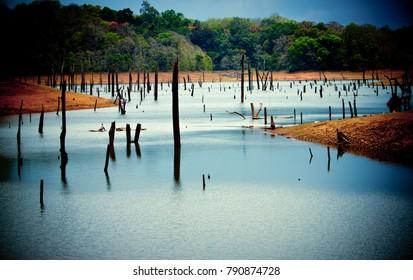 Periyar in Munnar