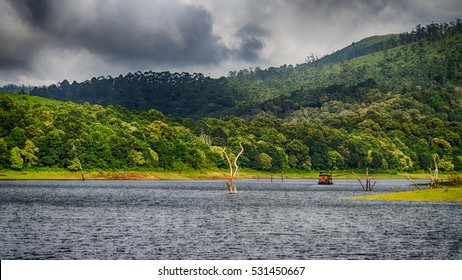 Periyar Tiger Reserve, Thekkady, Idukki District, Kerala, India- A Scenic View of the Forest and Mountains on a Cloudy Day