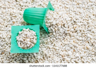 perlite with cup of planting set for hydroponics vegetable