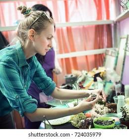 Master Class On Planting Succulents Florarium Stock Photo Edit Now