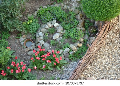 Permacultural element - herb spiral in spring season