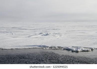 permafrost, dead silence