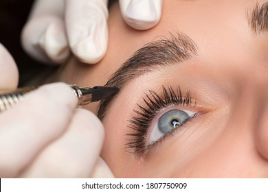 Permanent eyebrow makeup. Cosmetologist applying tattooing of eyebrows. Close up shoot