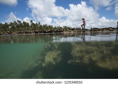 Tamandaré, Pernambuco / Brazil - 09/17/2015: Reef on Carneiros Beach, Pernambuco south coast