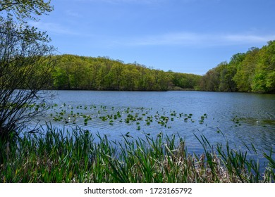 Perrineville Lake, in Millstone, New Jersey, is a preserved area maintained by the Monmouth County Park System.