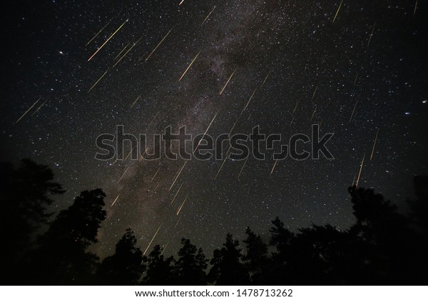 Perseid Meteor Shower. Collage of photos taken on the night of August 12, 2016 in the mountains of Arkhyz. Beautiful annual celestial event against the background of the Milky Way over the forest