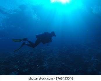 Person in black diving suit under water
