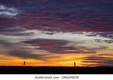 Person enjoying sunset, Maccauly Point Park, Esquimalt, British Columbia, Canada January 26, 2021