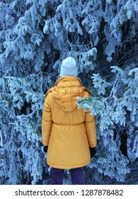 Person in the forest in the Winter Time. Branches embracing woman in yellow jacket. Girl with blond hair standing in trees surrounding. Frozen Woods in Finland. Charming conifer trees, frozen needles.