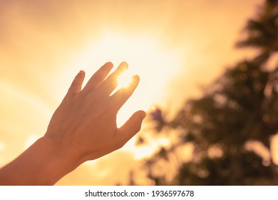 Person holding hand up to the light touching rays of warm sunshine through finger tips. Freedom in nature, and spirituality concept.