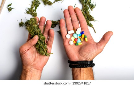 Person holding marijuana and medical pills point of view