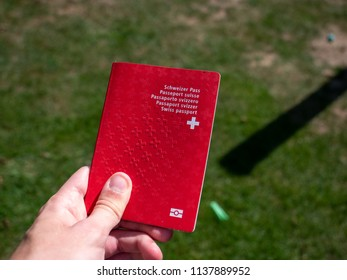 person holding the swiss passport on a sunny day grass background