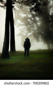 Person with a hood standing in a misty forest